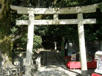 石原さとみCMの神社
