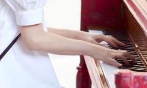 ハラミちゃんの手首